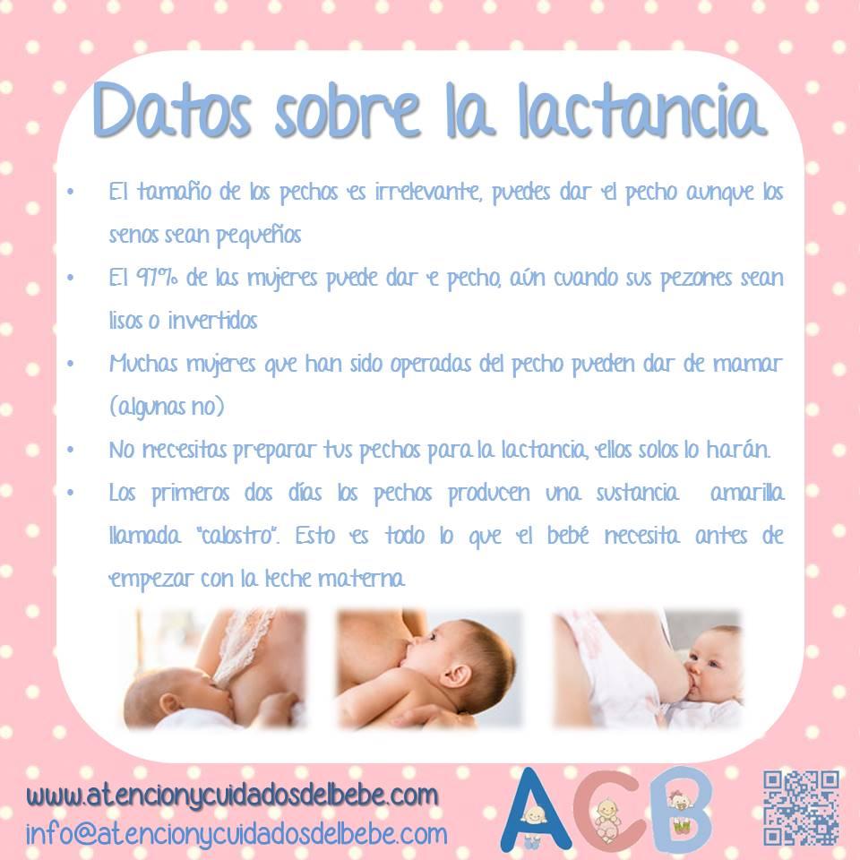 datos sobre la lactancia